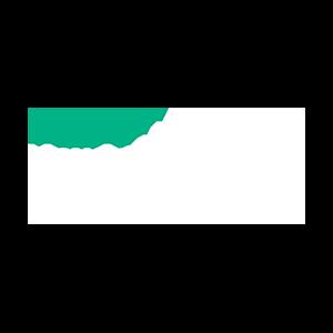 Hewlett_Packard_Enterprise_300x_slider_logo